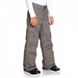 DC Banshee Youths Pants (Dark Gull Grey) - 20
